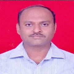 P. S. Choudhary
